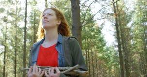 Женщина идя с деревянными ручками в лесе 4k видеоматериал