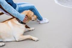 Женщина изнеживая собаку пока сидящ на стуле стоковые изображения rf