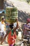 женщина индийского рынка зоны сельская Стоковое фото RF