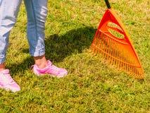 Женщина используя грабл для того чтобы очистить вверх лужайку сада стоковое фото