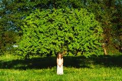Женщина и дерево Стоковое Изображение RF