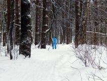 Женщина идет внутри для спорт на лыжах Стоковое Изображение