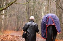 Женщина и прогулка лошади в парке стоковое изображение rf