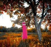 Женщина и платье Стоковые Изображения RF