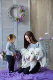 Женщина и ребенок играя с собакой whit волосатой во всходе студии на пурпуре стоковое изображение
