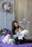 Женщина и ребенок играя с собакой whit волосатой во всходе студии на пурпуре стоковые фото