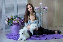 Женщина и ребенок играя с собакой whit волосатой во всходе студии на пурпуре стоковая фотография rf
