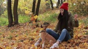 Женщина и собака битника играя с упаденными листьями видеоматериал
