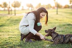 Женщина и собака тряся руку и лапку Стоковые Изображения RF