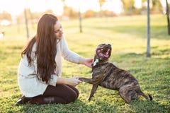 Женщина и собака тряся руку и лапку Стоковая Фотография RF