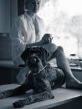 Женщина и собака Стоковое Изображение RF
