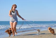 Женщина и собаки на пляже Стоковые Изображения
