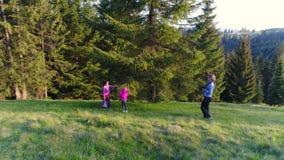 Женщина идя, весенний день фотографа в лесе видеоматериал