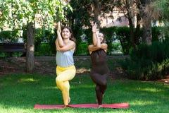 Женщина йоги на йоге зеленой травы внешней Счастливая женщина делая тренировки йоги, размышляет в парке стоковые изображения rf