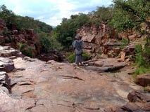 женщина каньона обозревая Стоковое фото RF