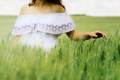 Женщина касающся и показывающ зеленой пшенице с 2 руками в поле стоковые изображения