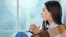 Женщина конца-вверх в оболочке в чашке удерживания шотландки напитка смотря замороженное окно акции видеоматериалы