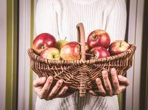 женщина корзины яблок полная Стоковое фото RF