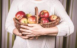 женщина корзины яблок полная Стоковые Фотографии RF