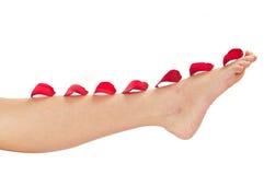 женщина красивейшей ноги розовая Стоковое Изображение RF