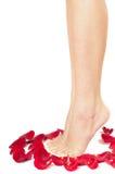 женщина красивейших ног розовая Стоковое Изображение RF