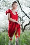 женщина красного цвета glamor платья стоковые изображения rf