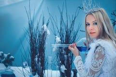 Женщина красоты зимы Красивая девушка фотомодели со стеклянными стилем причесок и макияжем склянок в лаборатории зимы Праздничный стоковые изображения
