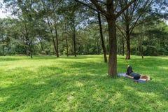 Женщина лежа вниз на траве стоковое фото rf