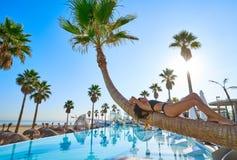Женщина лежа на согнутом бассейном хоботе пальмы Стоковая Фотография