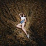 Женщина лежит в золотом поле пшеницы Стоковое Фото