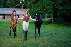 женщина лошадей 2 Стоковые Изображения RF