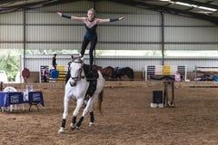 Женщина лошади вольтижируя конноспортивная Стоковое Изображение RF