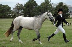 женщина лошади Стоковые Фото