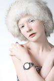 женщина льда Стоковое Изображение
