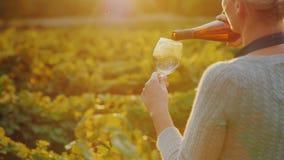 Женщина льет белое вино в стекло Частная дегустация на винодельне стоковые изображения rf