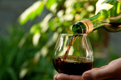 Женщина льет вино Стоковые Фотографии RF