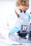 женщина микроскопа стоковые изображения