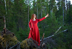 Женщина мистический лес Стоковая Фотография RF