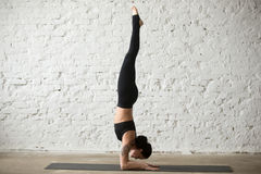 Женщина молодого yogi привлекательная в представлении Pincha Mayurasana, задней части просторной квартиры Стоковые Изображения