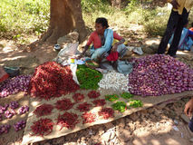женщина надувательства перцев chili индийская Стоковые Фотографии RF