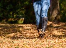 Женщина наслаждаясь листьями падения стоковые фотографии rf