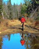 Женщина на горном велосипеде Стоковое Фото