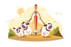 Женщина на коньке идя с собаками бесплатная иллюстрация