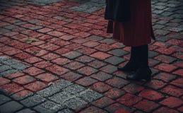 Женщина на красном кирпиче дороги стоковые фотографии rf