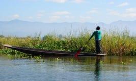 Женщина на шлюпке около плавать садовничает Озеро Inle myanmar стоковое изображение