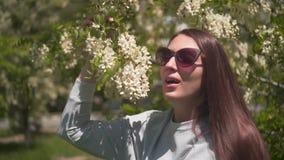 Женщина нежно касается и обнюхивается белой акации Красивая женщина в солнечных очках и красивой пахнуть акации сток-видео