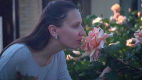 Женщина нежно касается и обнюхивается розам персика Красивая женщина и огромные персик-пахнуть розы сток-видео