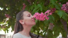 Женщина нежно касается и обнюхивается розовому каштану Красивая женщина и огромный розовый каштан сток-видео