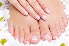 женщина ног красотки чисто Стоковое Изображение RF