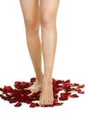 женщина ног длинняя Стоковые Фотографии RF